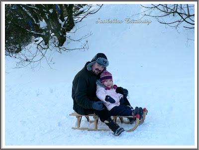 ~Winterimpressionen~ 8