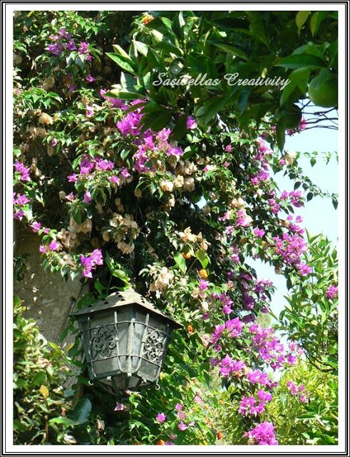 Tag 5 - Portofino ,Ort der Schönen und Reichen 66
