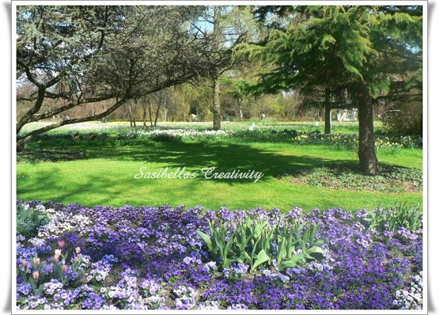Arboretum 50