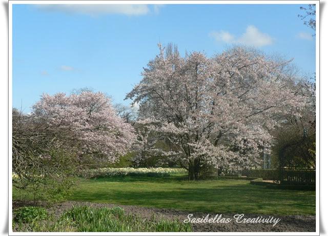 Arboretum 52