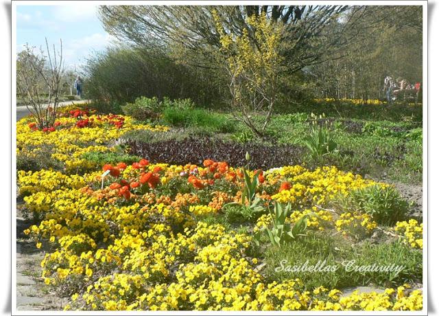 Arboretum 60