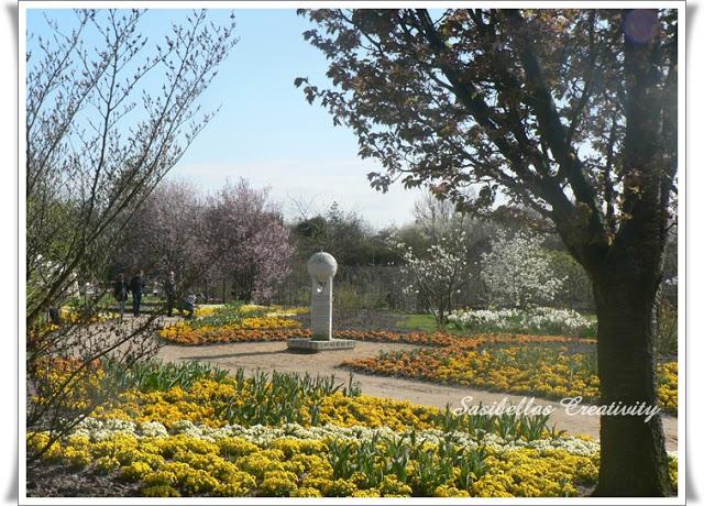 Arboretum 62