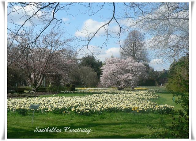 Arboretum 63