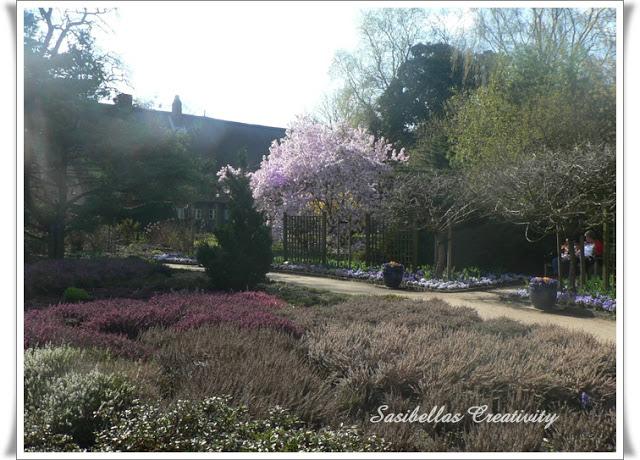 Arboretum 65