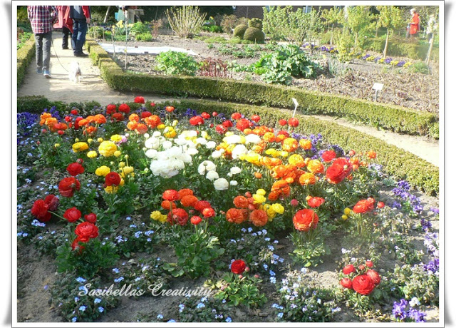 Arboretum 67