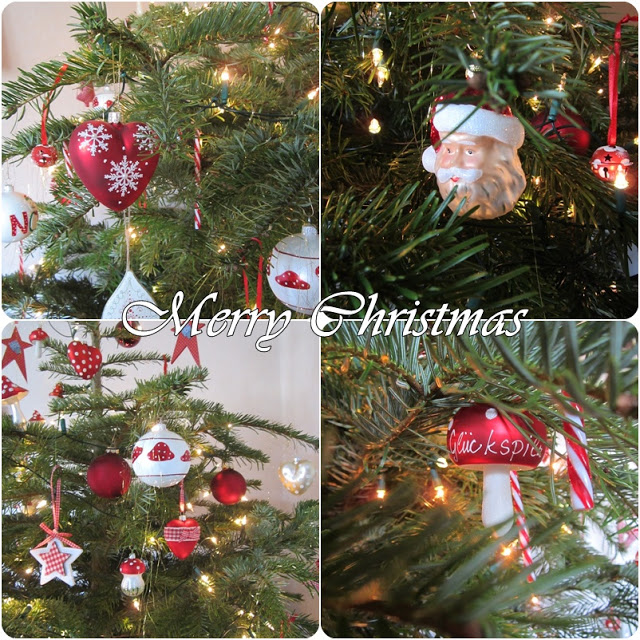 Weihnachtsfotos 2