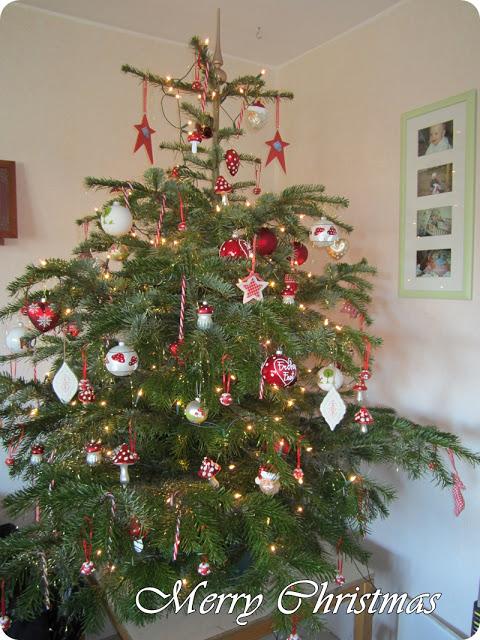 Weihnachtsfotos 1
