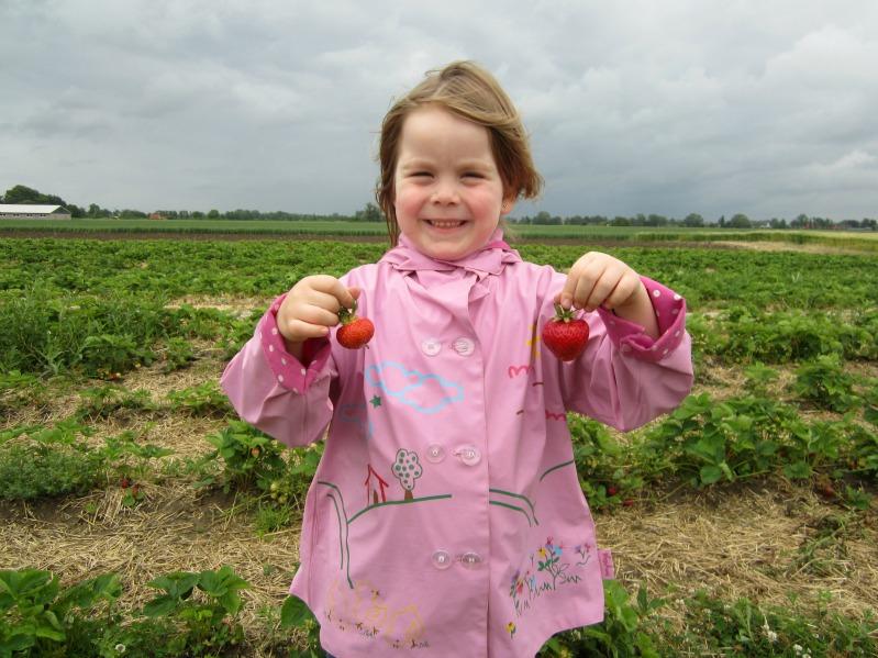"Erdbeerwoche Tag 1 - "" Erdbeer -Ricotta -Creme "" 13"