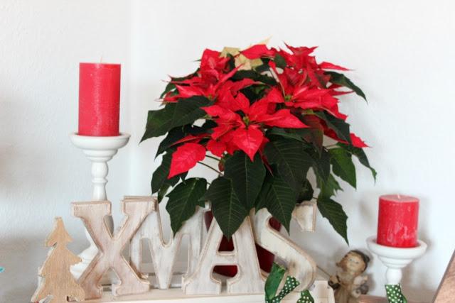 Adventskalendertürchen # 3 - Advent,Advent...... 29