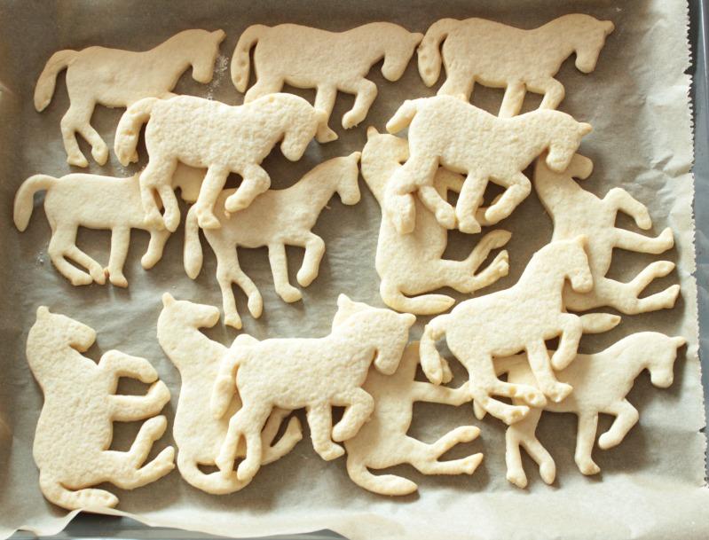 Pferde-Geburtstagsparty - Tolle Ideen für einen gelungenen Kindergeburtstag - Teil 1 - DIY, Deko, Gastgeschenke 33