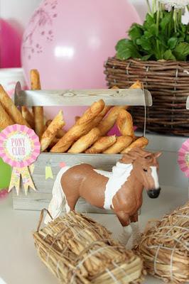 Pferde-Geburtstagsparty - Tolle Ideen für einen gelungenen Kindergeburtstag - Teil 1 - DIY, Deko, Gastgeschenke 19