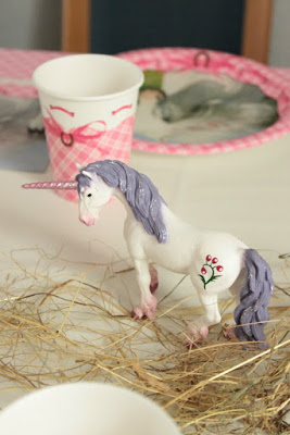 Pferde-Geburtstagsparty - Tolle Ideen für einen gelungenen Kindergeburtstag - Teil 1 - DIY, Deko, Gastgeschenke 26