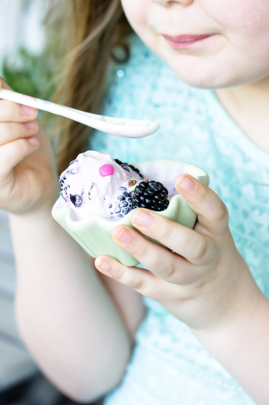 Brombeer Frozen Joghurt