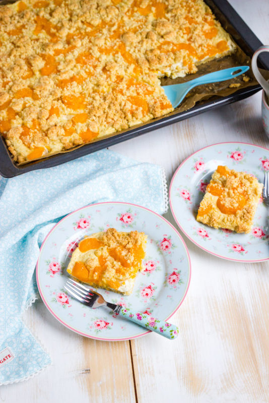 Omas einfacher Quark Streuselkuchen mit Mandarinen 1